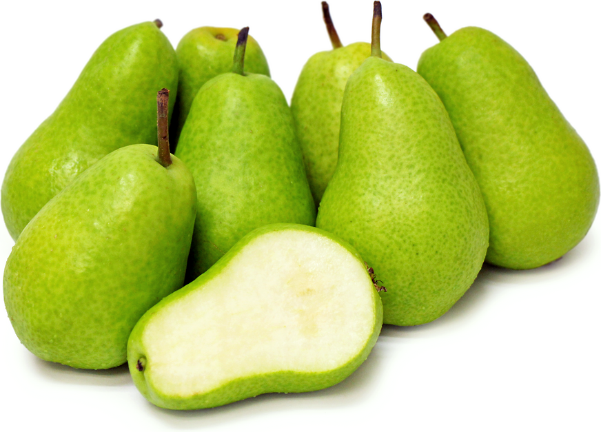 Tosca Pears picture