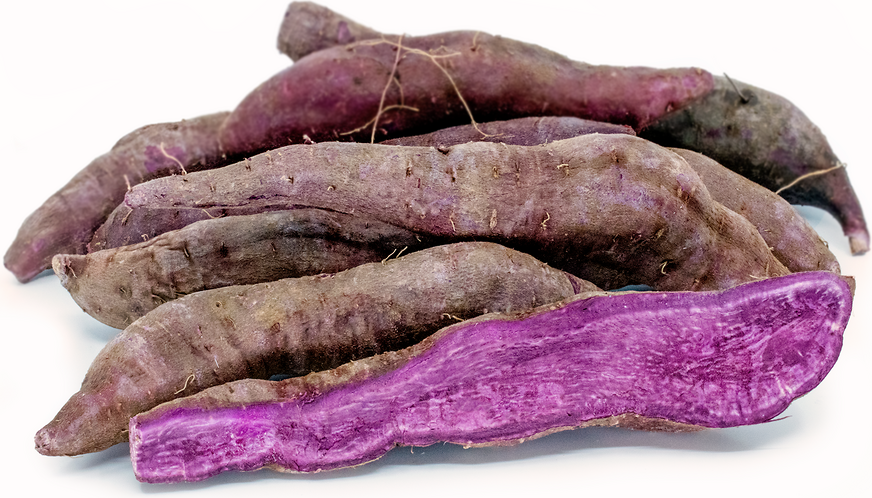 Purple Japanese Sweet Potato