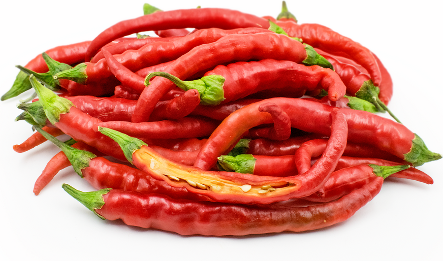 Red Cayenne Chile Peppers picture